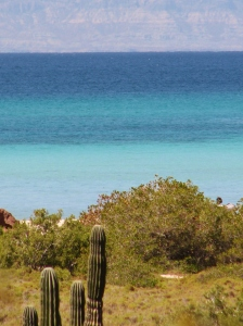 The View from the Arroyo, Ensenada Grande