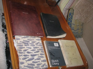 Willow's logs are the large brown, dark blue, small sketch book, and half of the light green book.